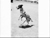 A dog at either Strathallan or Margaret Reid Hospital during the visit of Hopalong Cassidy ?
