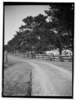 Item 03: 'Campbell Fields', Minto, 1927 / photographer E.G. Shaw