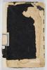 C 76 : Sir Thomas Mitchell diary, 1855