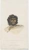 Yango Mungo Y'eyango, ca. 1817-1819 / John William Lewin