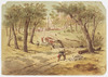 [Gold Diggings; Panoramic views of Sydney and Queensland]